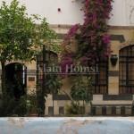 Zahr (Fleurs) : Damas, décembre 2010